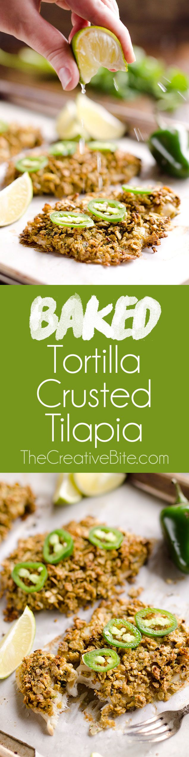 Baked Tortilla Crusted Tilapia is a light and healthy dinner idea with a crunchy tortilla crust full of spicy southwestern flavors that is ready in less than 30 minutes!#Fish #Healthy #Dinner