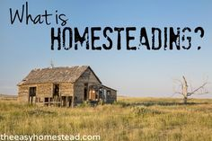 What is Homesteading? | The Easy Homestead (.com)