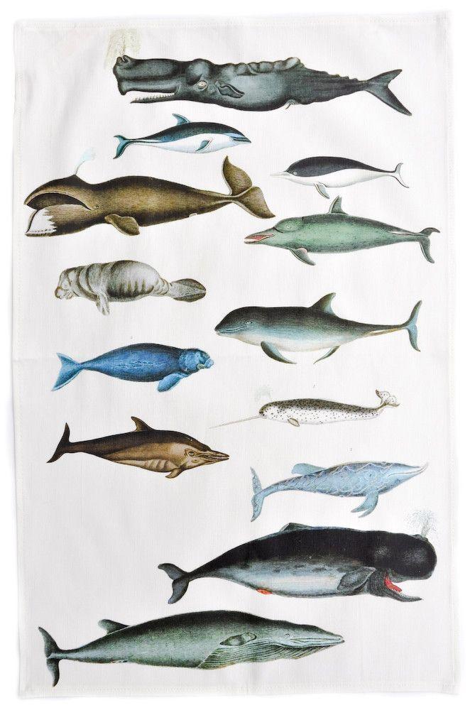Sea Mammals Tea Towel