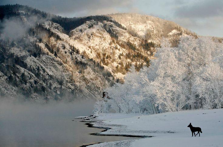 Yenisei River seasons - The Big Picture - Boston.com