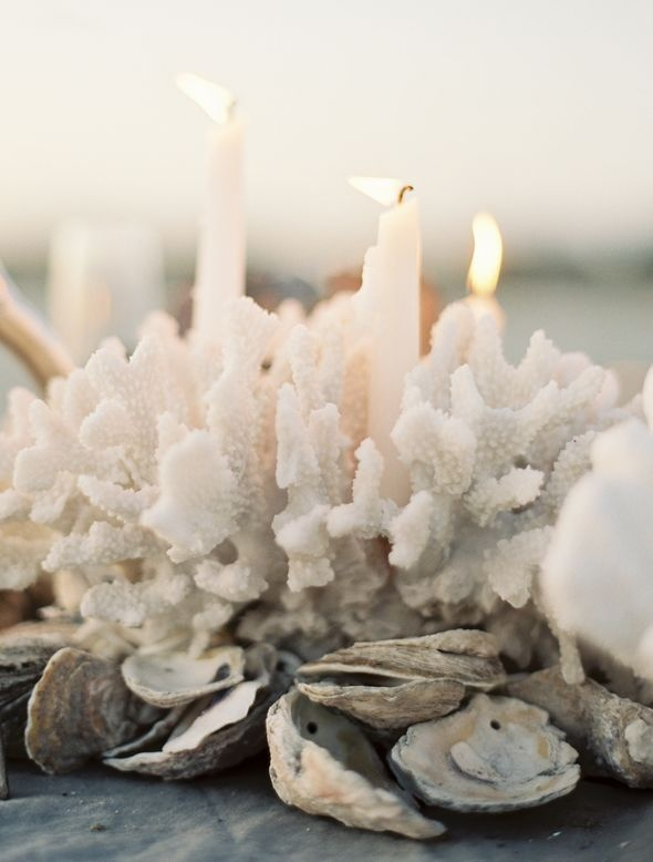 coral + oyster centerpiece. So lovely for a beachy affair!