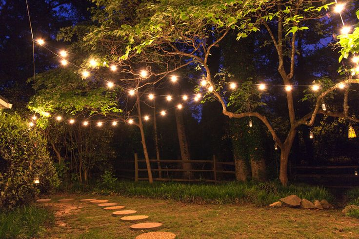How To String Lights On An Outside Tree : 151 best images about Patio and Deck Lighting Ideas on Pinterest Led party lights, Palm trees ...