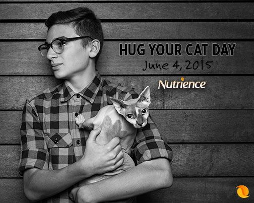Cat lovers celebrate this day every day.