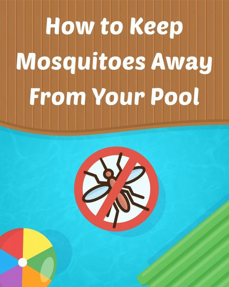 Elaborate, rich visuals track your ball's path and give you a realistic feel. How To Keep Mosquitoes Away From Your Pool 1000 Keeping Mosquitos Away Swimming Pool Maintenance Pool Hacks