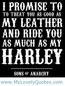 30 best riding images on pinterest biker chick girls on bikes harley quotes voltagebd Choice Image