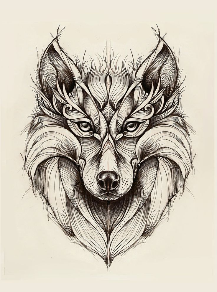 Wolf by madanmar.deviantart.com on @deviantART