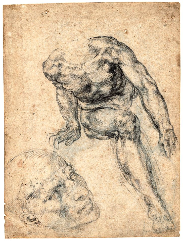 michelangelo - Michelangelo Lebenslauf