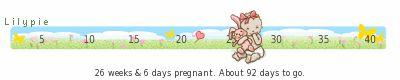 26 semanas y 3 días de embarazo