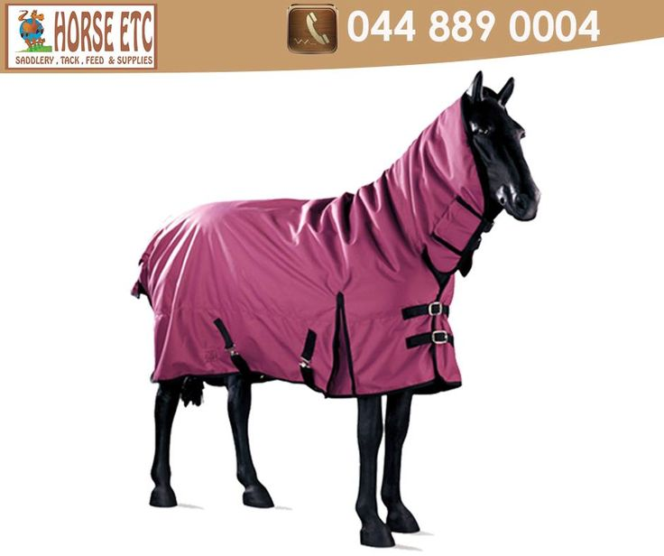 Keep Your Horse Dry And Warm With A Bluesteel Hooded Waterproof Outdoor Rug From Horseetc