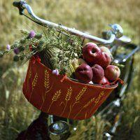 Un panier de vélo peint d'épis de blé