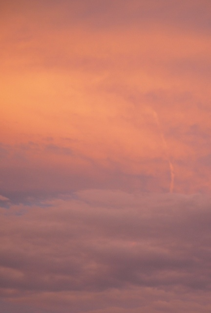 salmon pink colored sky