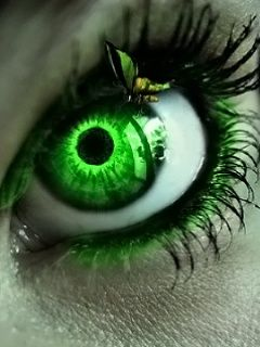 Insect on Vibrant Green Eye