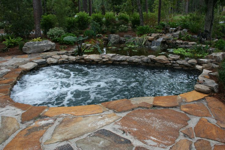 8 Best Images About Florida Pool On Pinterest Savannah Pools And Waterfalls