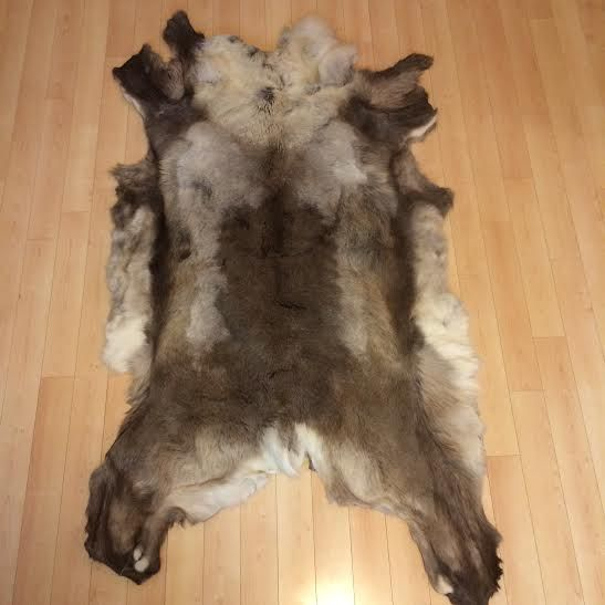 Tanned Caribou Hide