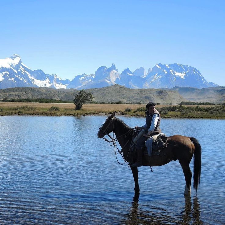 Torres del Paine National Park southern Chile Gonzalo Astorga #horseridingpatagonia #horse #horseriding #patagonia #holiday #vacation #horsebackriding #ridingholiday #torresdelpaine #guachos #glaciers