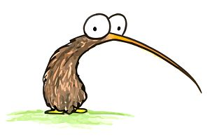 a cartoon drawing of a kiwi bird, for free use in a book report or facebook page