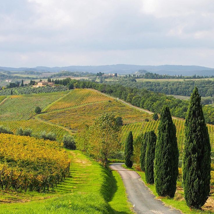 """""""The traveler sees what he sees; the tourist sees what he has come to see."""" - G.K. Chesterton Tuscany Italy"""