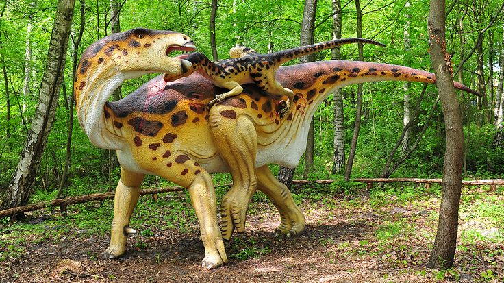 Once again, we are reminding about Dino Park in Leba. This unqiue place is filled up with dinosaurs replicas and special areas for kids. Tour to Dino Park is available here: http://gdanskshuttle.info You won't regret it!