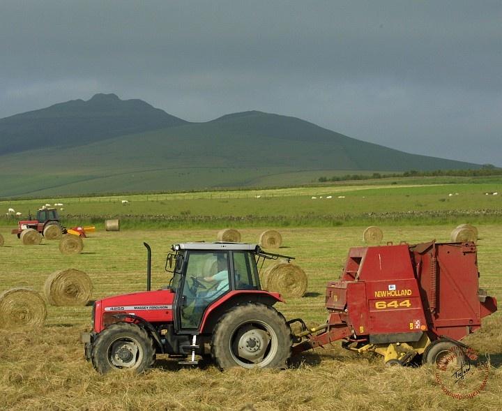 Farming 8W92D-01.JPG (720×589)