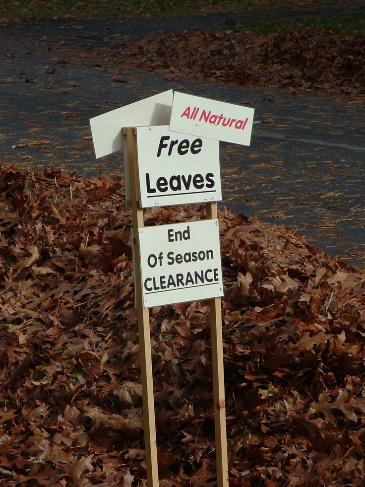 26 Best Images About Autumn Signs Amp Chalk On Pinterest