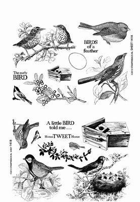Stampinback KIT 141 Birds