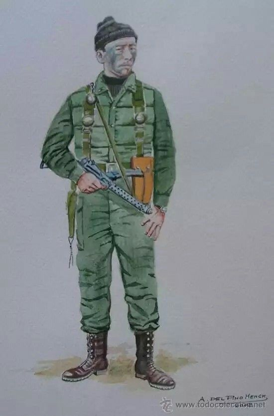 Guerra des Malvinas - Buzo Tactico, pin by Paolo Marzioli