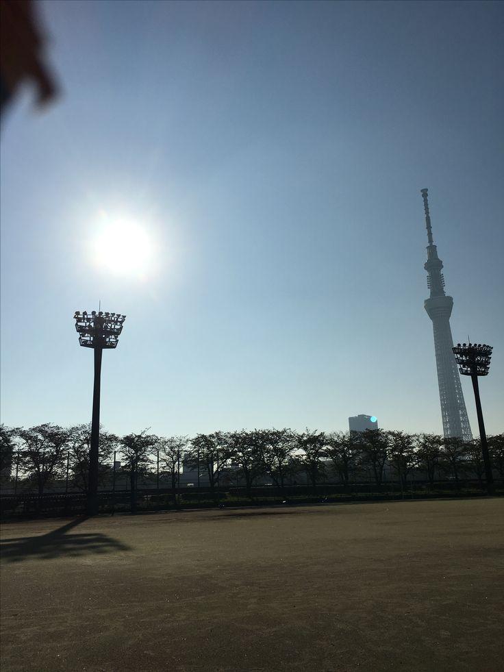 隅田公園野球場  おはようございます\(^o^)/