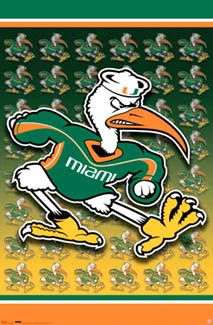 University of MIAMI HURRICANES Logo Poster - Sebastian the Ibis - Available at www.sportsposterwarehouse.com