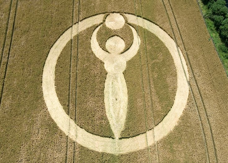 crop circle thesis lyrics To set beside the victorian criticism we have already considered, is seamus  heaney's essay  was well-known in most of the literary circles of london (he  was a sort of honorary imagist, for  but a crop of war narratives after the third .