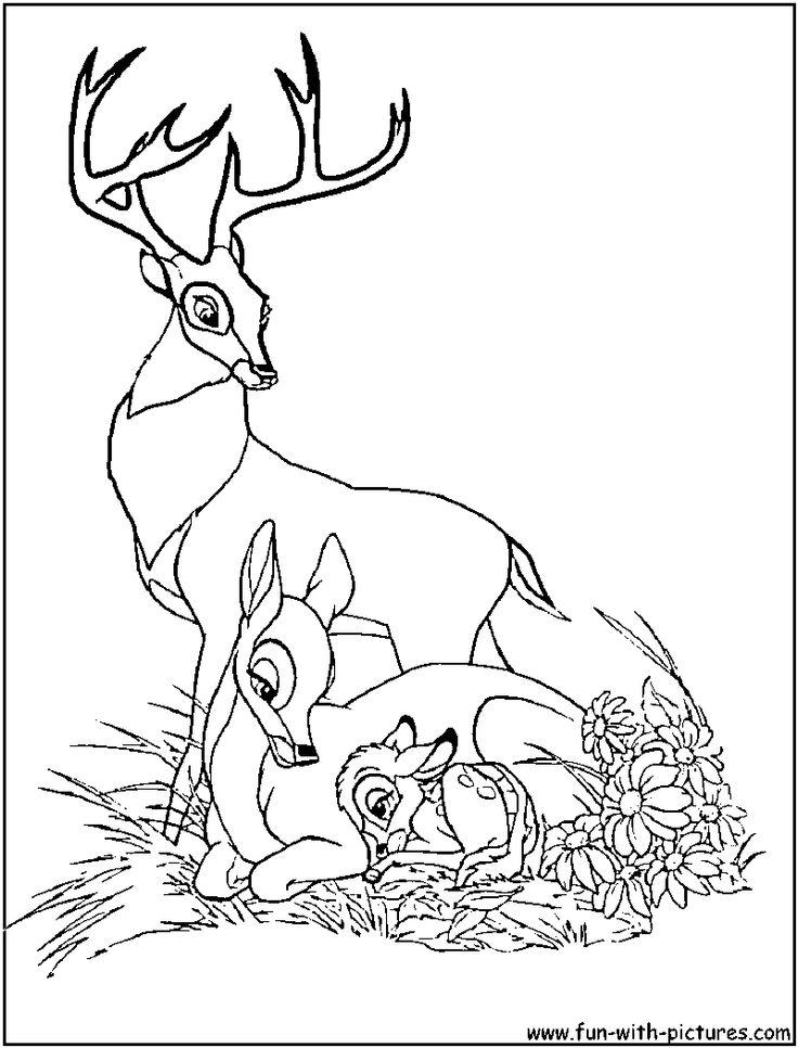 bambi mom coloring pages - photo#6
