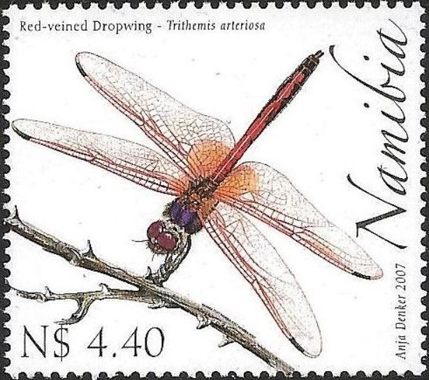 Stamp Red Veined Dropwing Trithemis Arteriosa Namibia Dragonflies Mi Na 1240 Sn Na 1122 Yt Na 1124 Stamp Vintage Postage Stamps Red Veins