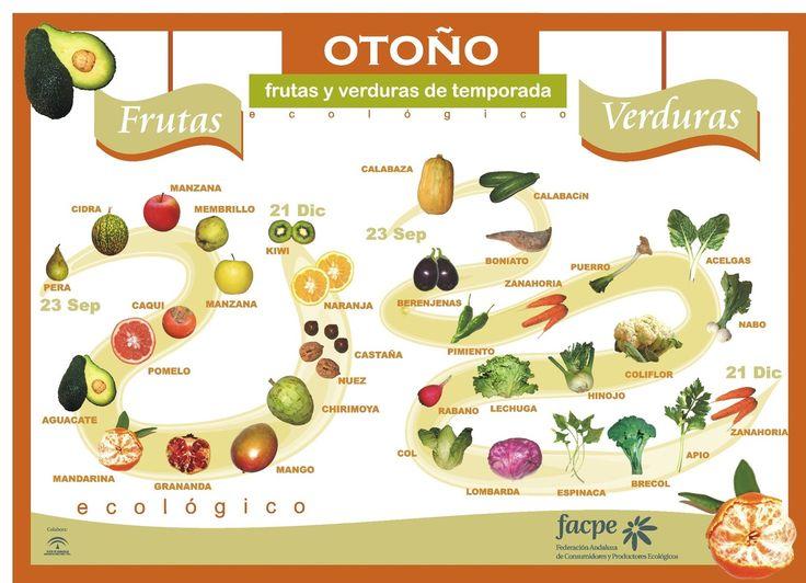 En la entrada de hoy vamos a aprender el nombre de frutas y verduras típicas de esta época del año, el otoño. ¡Buen provecho!