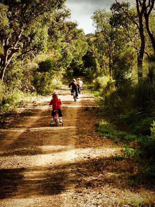 The Munda Biddi Trail along the Wilson Inlet, Denmark, Western Australia