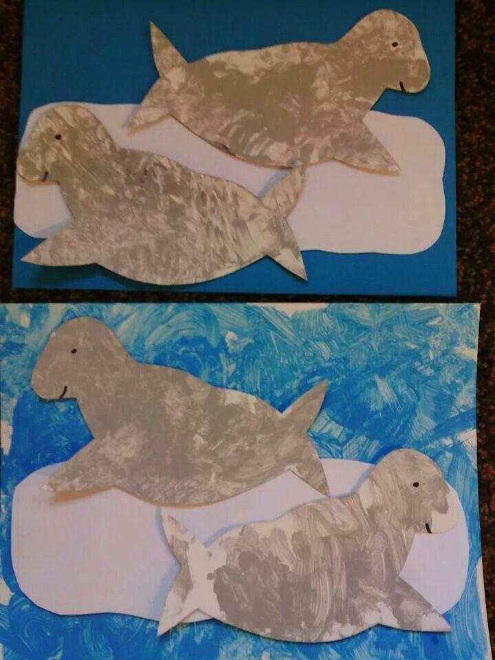 1000 afbeeldingen zeehonden op creatief