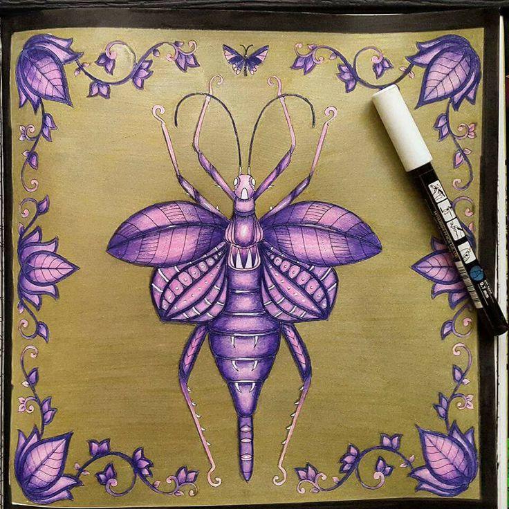 16 Best J Basford Insekt Images On Pinterest