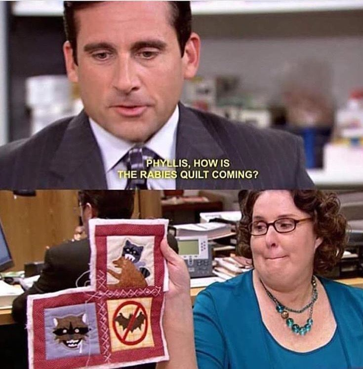The Office Cafe Disco Quotes: 702 Best Images About The Office :) On Pinterest