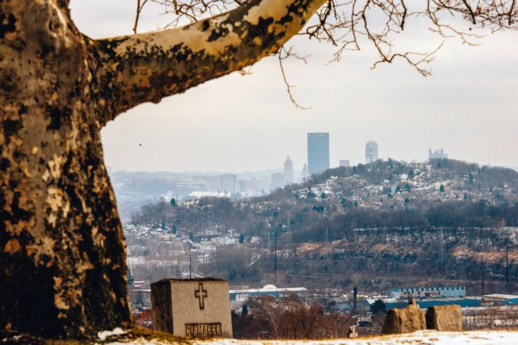 A tree frames the Pittsburgh skyline from McKees Rocks