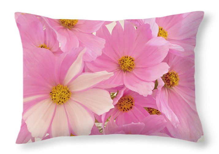 Cosmo Throw Pillow featuring the photograph Pink Cosmos Sonata by Sandra Foster