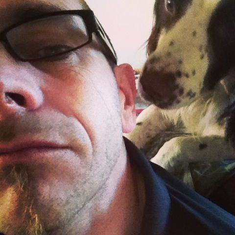 Harry James giving my ear some love haha  #englishspringer #springerspaniel