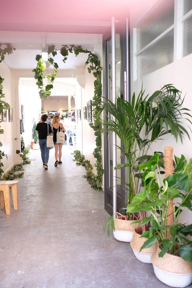 Végétalisation showroom - les others - monstera, kentia, panier
