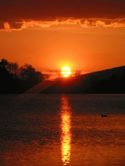 ผลการค้นหารูปภาพสำหรับ animasi bergerak matahari terbit