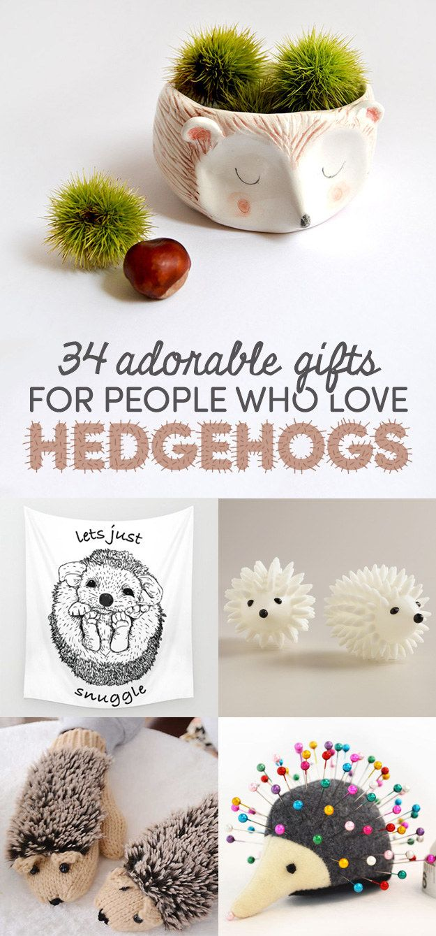 34 Insanely Adorable Gifts For People Who Love Hedgehogs...I want almost all of these things!