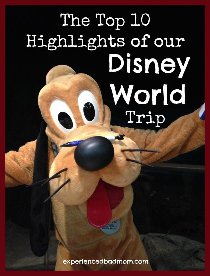 Have you been to Disney World? What's your favorite memory from your trip? Here are the Top 10 Silly and Sweet Highlights of my Disney World trip. Does the first highlight make you giggle?!?