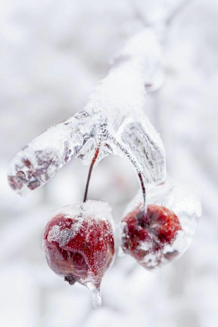 Formidable photo montagne photos paysages paysages d hiver