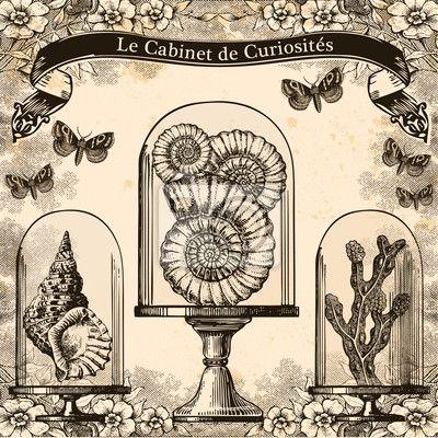Papier peint le cabinet de curiosités - bureau • PIXERS.fr