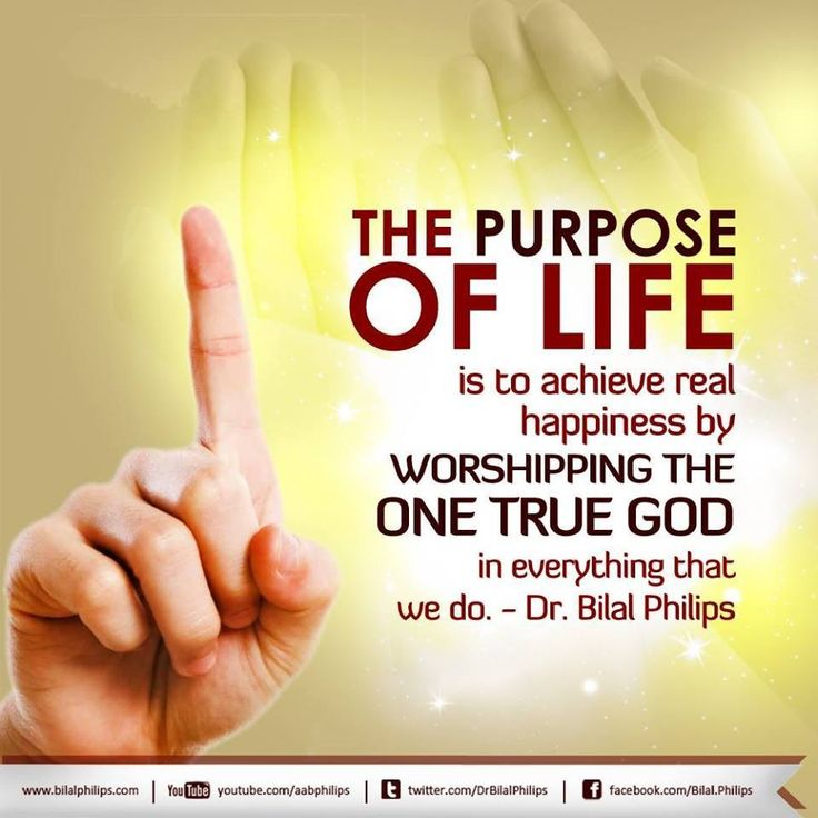 what is our purpose in life islam