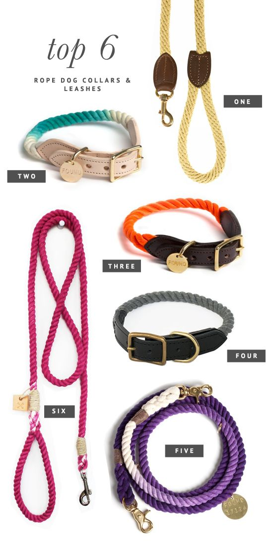 Top 6 Rope Dog Collars and Leashes | Pretty Fluffy