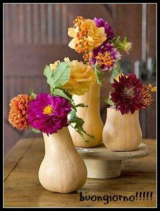 buongiorno con fiori e zucche...