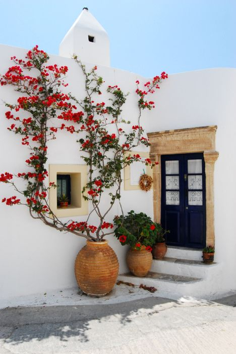 White stucco exterior with climbing flowers: Bougainvillea, Dreams, Blue Doors, Flowers Vines, Red Flowers, Greece, Islands, Summer Houses, White Wall