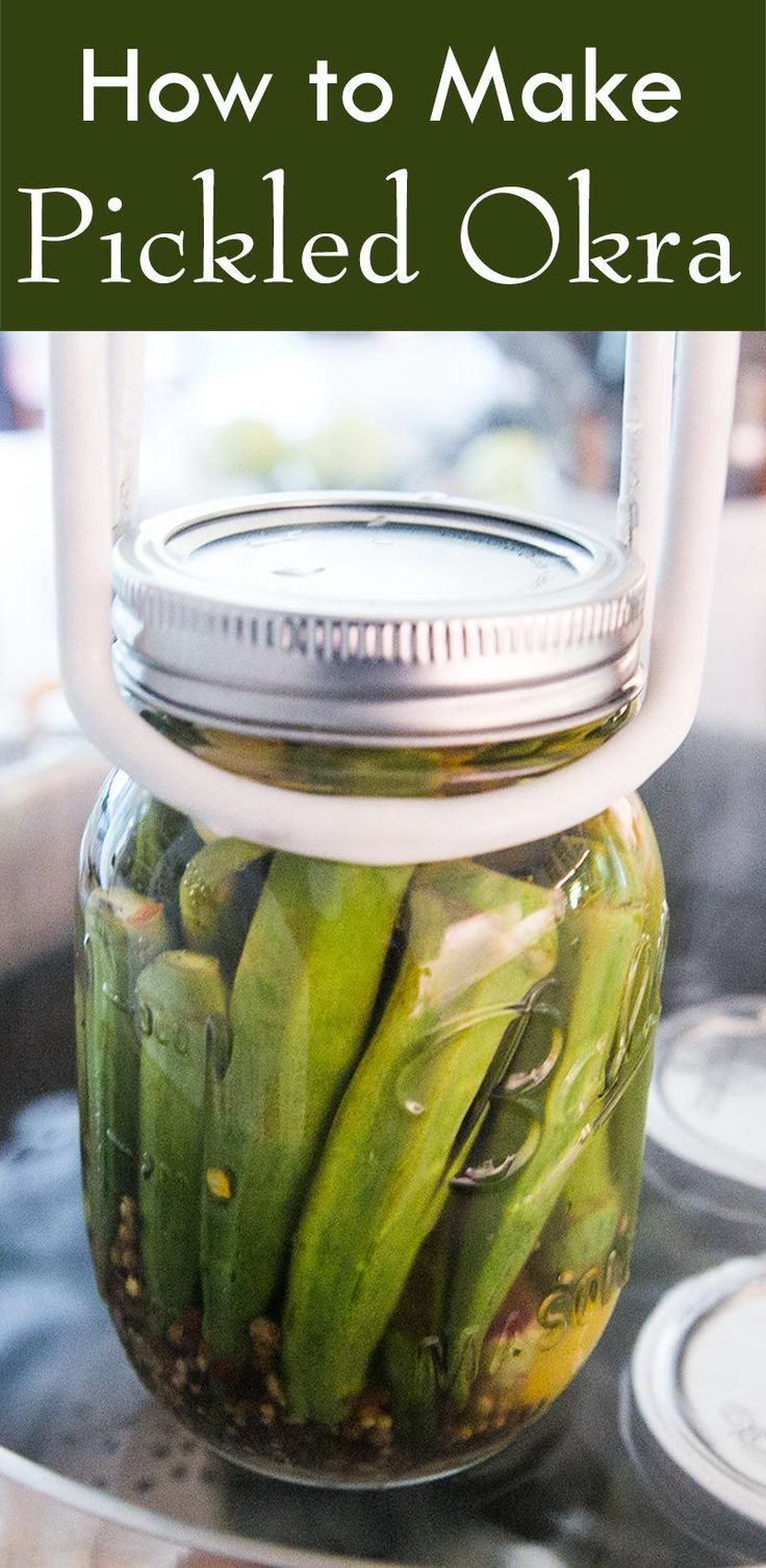 Okra make the best pickles! Lightly spicy homemade pickled okra, with cider…